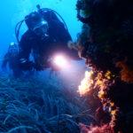 Un sogno diventa realtà: ok alle immersioni subacquee per chi soffre di diabete